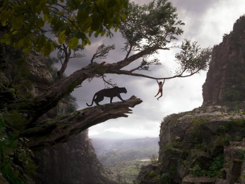 Скачать торрент книга джунглей